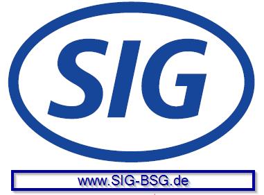 SIG-BSG Logo